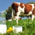 Coronavirus driving dairy product sales and production, says Jatenergy