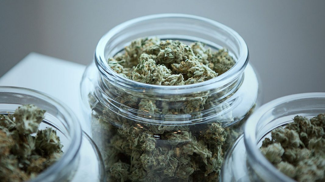 Little Green Pharma to supply medicinal cannabis to underserviced German market
