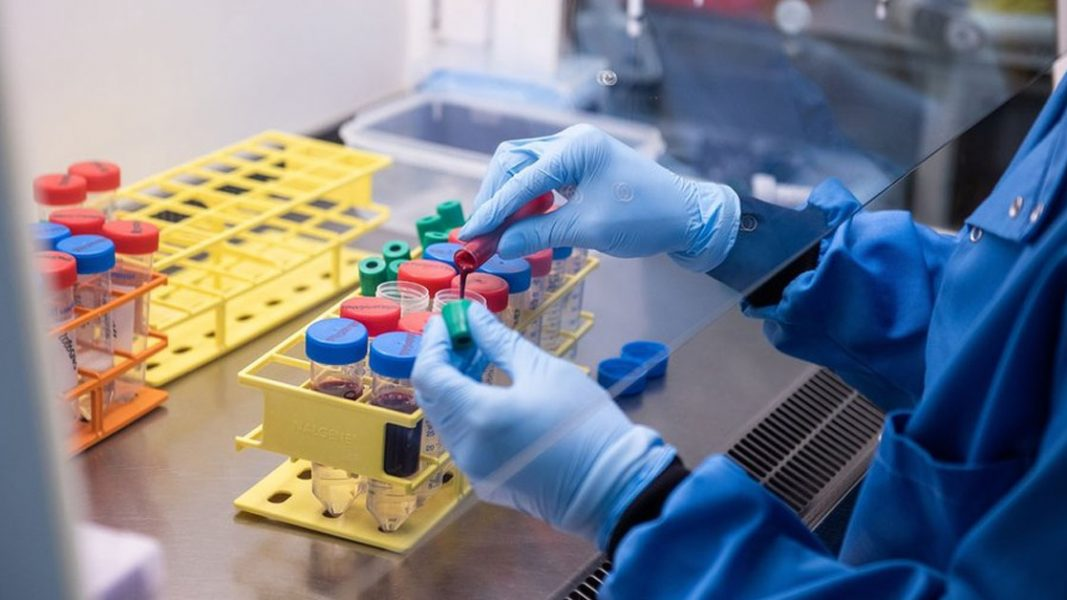 Markets hold and looking for direction, UK vaccine trials back on